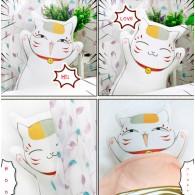 ตุ๊กตาอาจารย์ Nyanko
